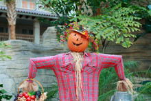 An October Halloween Scene Showing A Scare Crow With A Pumpkin Head.