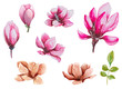 Leinwanddruck Bild Watercolor magnolia flowers set for background, texture, wrapper pattern, frame or border, hand drawn, illustration