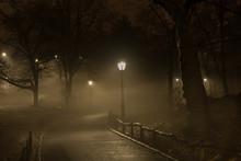 Central Park Night