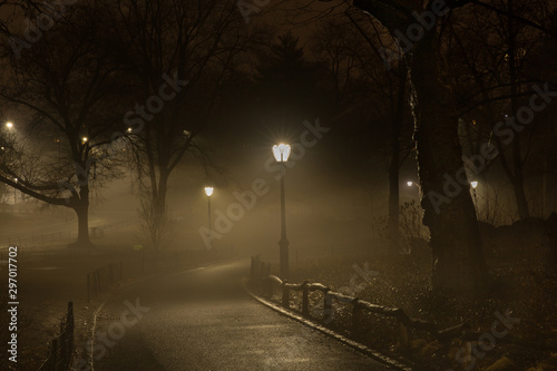 Central Park Night Canvas Print