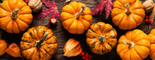Autumn Decorative Pumpkins Wit...