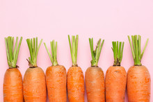 Fresh Carrots On Color Backgro...