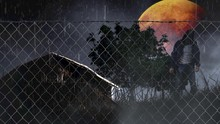 Halloween Barn With Orange Moon And Zombie 4K Loop Features An Old Barn In A Field Behind A Chain Link Fence With Rolling Clouds And A Rain Storm With An Orange Moon And Zombie In A Loop.