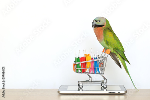 Autocollant pour porte Perroquets Shopping online,Parrot on model miniature shopping cart and shopping bag on tablet smart device