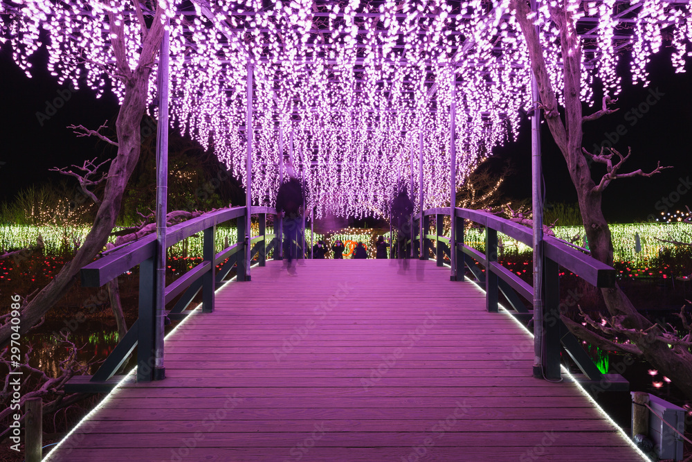 Fototapety, obrazy: Teamlab Digitized Lakeside and Forest in Saitama