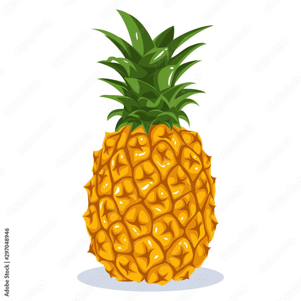 Fototapeta Pineapple fruit vector