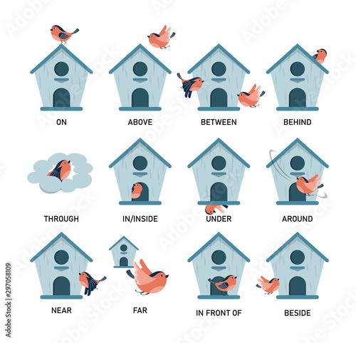 Fototapeta Bird and birdhouse, learning preposition vector isolated. obraz
