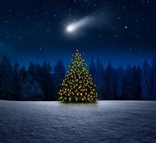Leuchtender Weihnachtsbaum Im Schnee Bei Nacht An Heiligabend