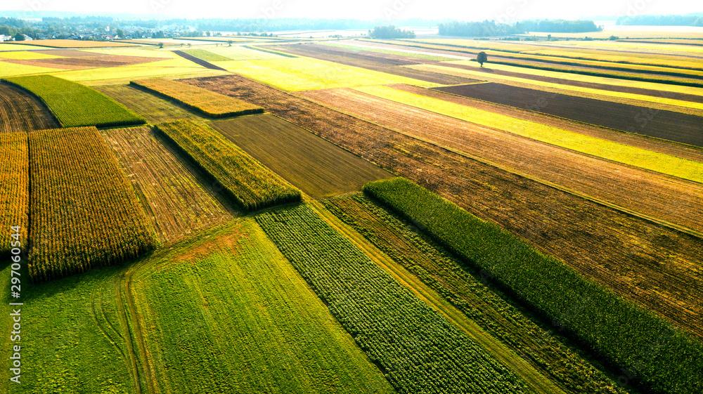 Obraz Colorful Farmland and Scenic Countryside. Aerial Drone view fototapeta, plakat