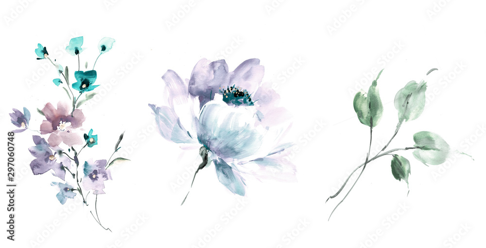 Fototapety, obrazy: Flowers watercolor illustration.Manual composition.Big Set watercolor elements.