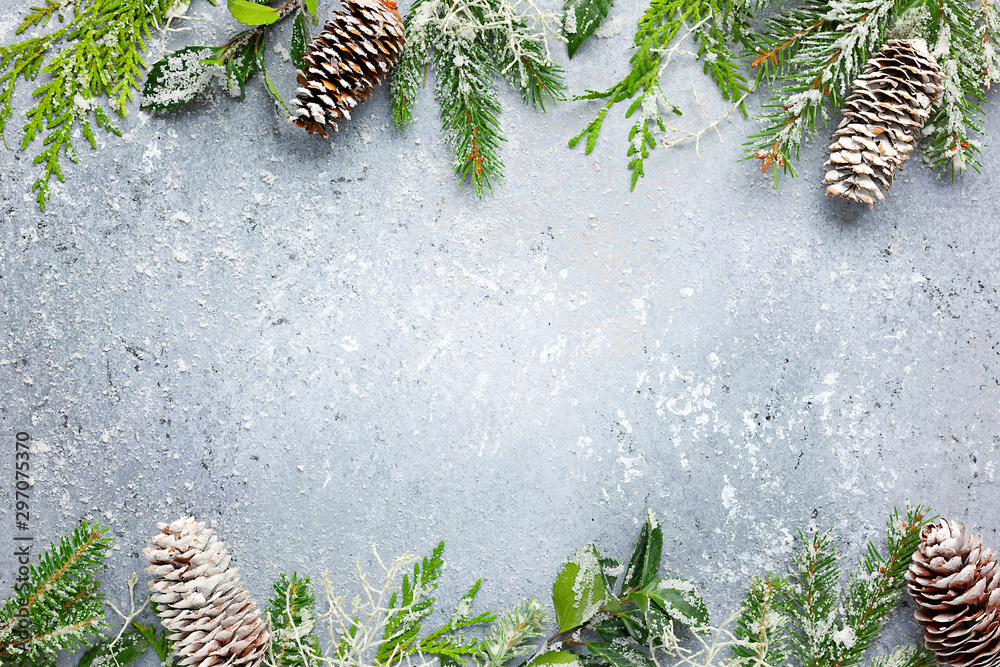 Fototapeta Christmas or winter background with a border of green and frosted evergreen branches and pine cones on a grey vintage board. Flat lay