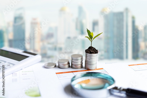 Fototapeta The tree  growing on money coin stack for investment,  business newspaper with financial report on desk of investor real estate business.  Investment property growth Concept obraz