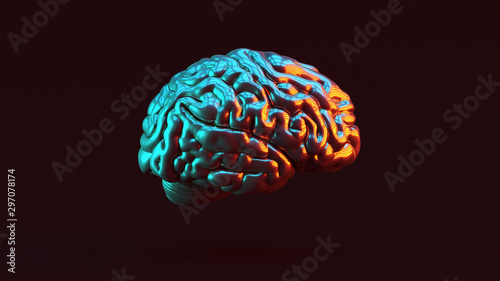 Papel de parede  Silver Human brain Anatomical with Red Orange and Blue Green Moody 80s lighting