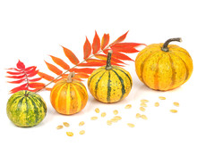 Four Yellow Decorative Pumpkins With Autumn Leaves And Seeds Isolated On White