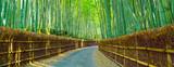 木漏れ日の竹林と小道