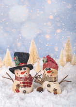 Two Snowmen In A Holiday Winte...