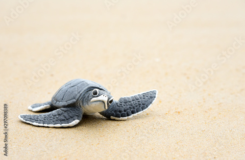 Fotografie, Obraz  Little turtle on a white beach