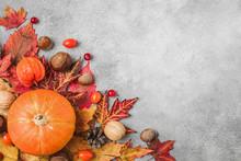 Happy Thanksgiving Concept. Au...