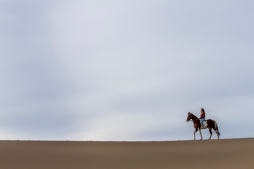 A Lovely Brunette Model Walks Her Horse Through The Desert On A Summers Day