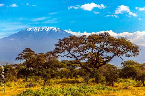 szczyt-sniegu-kilimandzaro