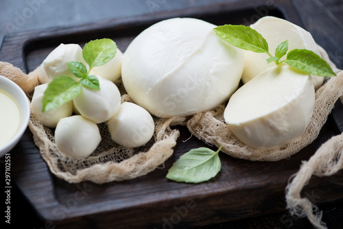 Fotomural Close-up of various types of mozzarella cheese with fresh green basil on a black