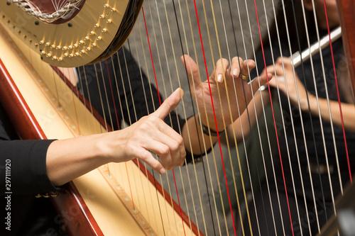 Fotografia harp player female musician, hand detail