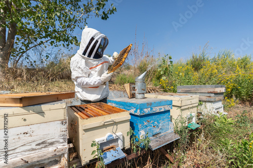 Beekeeper is holding a honeycomp for collecting honey from the apiary Canvas Print