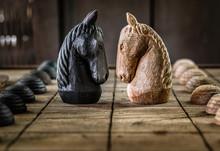 Battle Of Wooden Chess Horse
