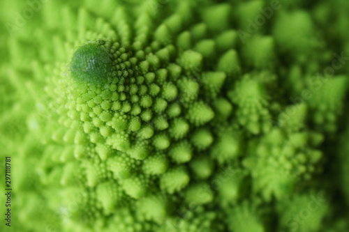 Fototapeta Close up of the detail of a Romanesco Broccoli (or Cauliflower) with its natural fractal pattern. obraz