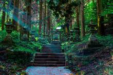 Shrine In The Forest, Aso, Kum...