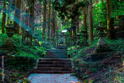 Canvas Print shrine in the forest, Aso, Kumamoto