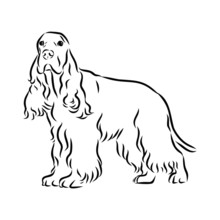 Vector Illustration Of A Dog, ...