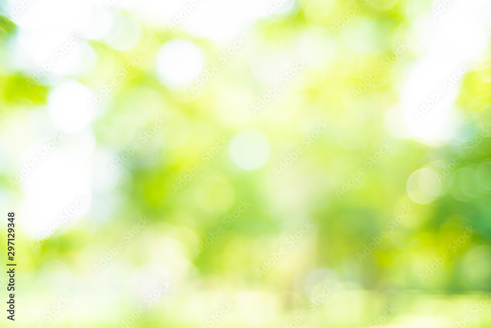 Fototapety, obrazy: Abstract blurred green park with sun light beam