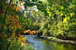 canvas print picture - View of the Delaware and Raritan (D&R) canal in Kingston, New Jersey, in the fall