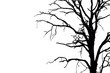 Leinwanddruck Bild - Dead branches , Silhouette dead tree or dry tree on white background with clipping path.