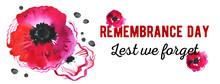Remembrance Day Design Concept...