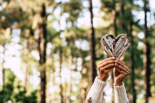 Obraz na plátně hands of woman holding a wooden heart with at the background a wood or forest -