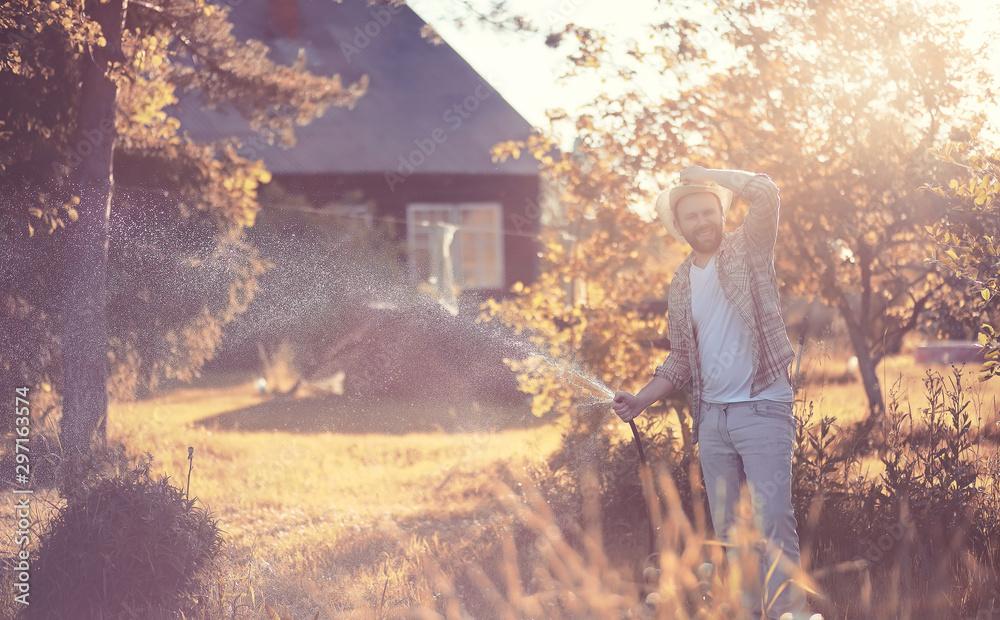 Fototapety, obrazy: Man farmer watering a vegetable garden