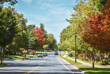 Road Through Trees With Autumn...