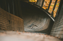 Abandoned Luge Track In Pine W...