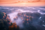 Fototapeta  - Aerial view of foggy forest at colorful sunrise in autumn. Amazing landscape with colorful trees in fog, river, field and red sky with sun in the morning. Fall colors. Fairy scenery. Top view. Nature