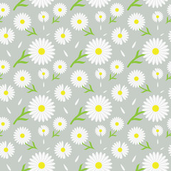 Fototapeta Kwiaty Beautiful daisy/chamomile floral pattern for fabric/textile print