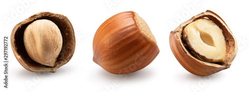Tela collection of hazelnuts in shell isolated on a white background