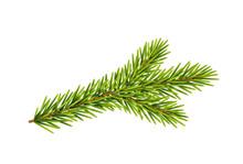 Tannenzweig, Weihnachts-Dekora...