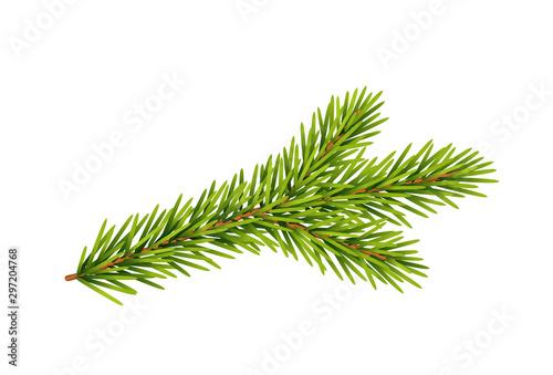 Tannenzweig, Weihnachts-Dekoration, Vektor Illustration isoliert auf weißem Hint Fototapeta
