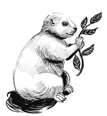 Cute fluffy animal eating leaves from the branch. Ink black and white drawing