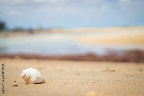 Fotografie, Obraz  Praia de Galinhos-RN, Brasil