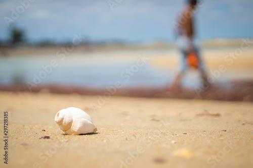 Fototapeta  Praia de Galinhos-RN, Brasil