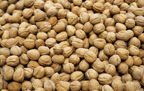 Cuadros en Lienzo  walnut in pile during harvest season as food background