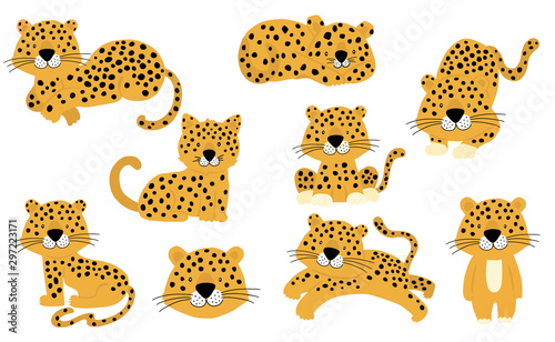 Fotografie, Obraz Cute animal object collection with leopard,tiger